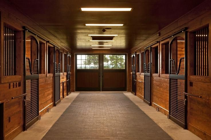 Horse Shelters Stalls Vs Run In Sheds Welcome To Horse